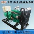 Instalaciones energéticas de biogas