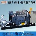 Alternate current generators