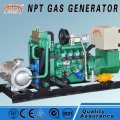 Small Biogas Engine Genset with CHP, 20kw