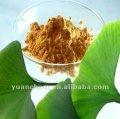 Ginkgo biloba extract