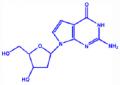 7-脱氮-2'-脱氧鸟苷