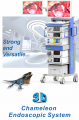 3D Chameleon Endoscopic System