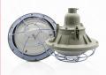 Промышленный взрывозащищенный светильник IP65 50W 2 × 36W 100W 220W