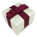 Luxury white leatherette jewelry packaging box with ribbon  bow