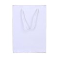 Custom 120g white craft gift bag paper jewelry package bag with twisted pp handle
