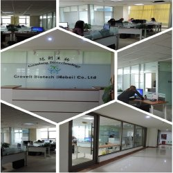 Therapy China - services on Allbiz