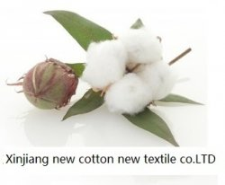 Xinjiang new cotton new textile co.LTD