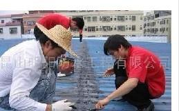 预定 提供服务昆山防水昆山专业防水昆山防水公司