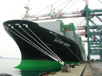 预定 海运 国际货物运输代理