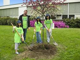 Order Planting of trees and shrubs