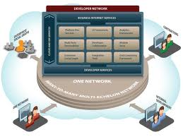 预定 Network software development