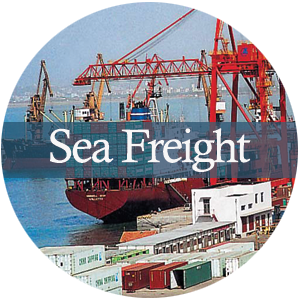 预定 海运交货 Sea freight