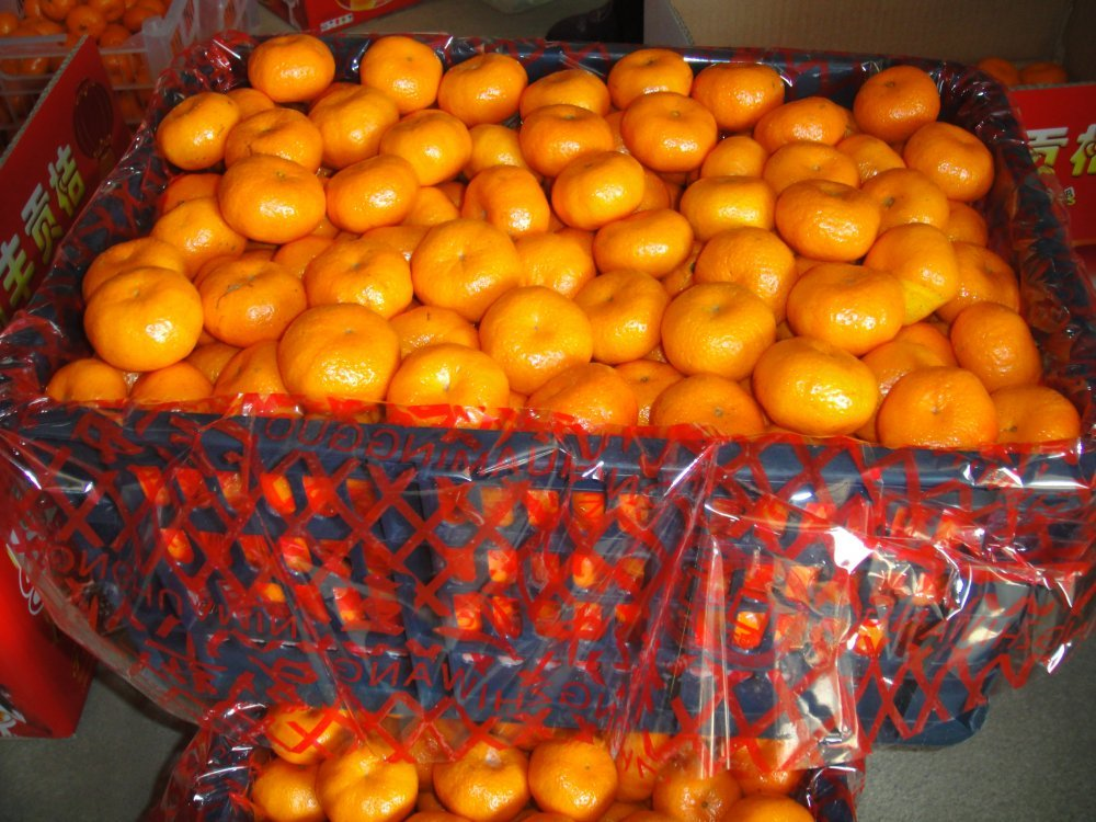 Order Processing vegetables and fruit