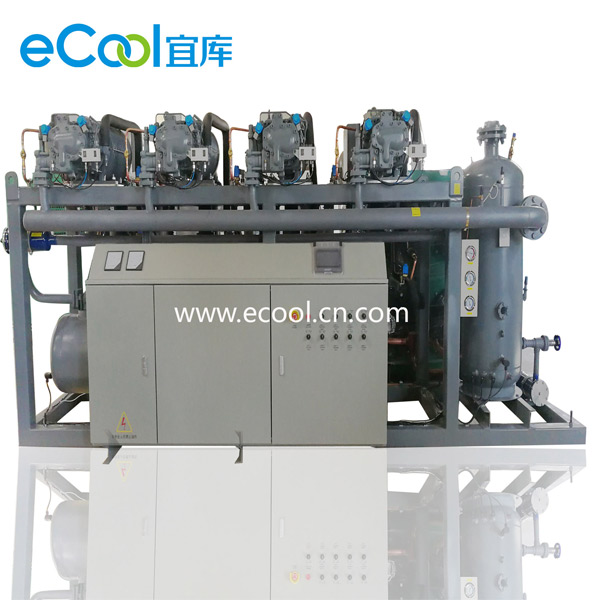 Order Low-Temperature Screw Type Multi-Compressor Unit
