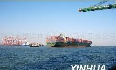 提供服务东莞到保定国内海运物流货代
