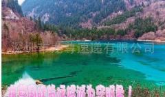 深圳-美国DHL服务