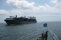 深圳 -- 阿帕帕海运