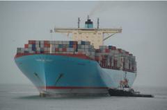 Global Sea Freight / Ocean Freight /