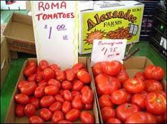 Vegetables Marketing
