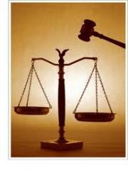 Litigation & other judicial remedies against IP infringement & unfair competition