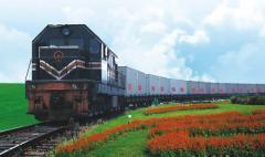 深圳上海天津青岛至阿拉梅金铁路运输