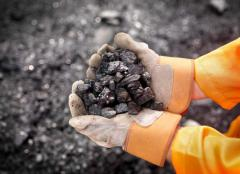 Steam coal from Ukraine and Russia