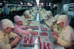 Manufactory