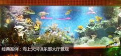 水族馆及大型观赏缸、鱼缸、海鲜池及海洋人造景观的设计与施工