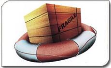 货物保险 Cargo insurance